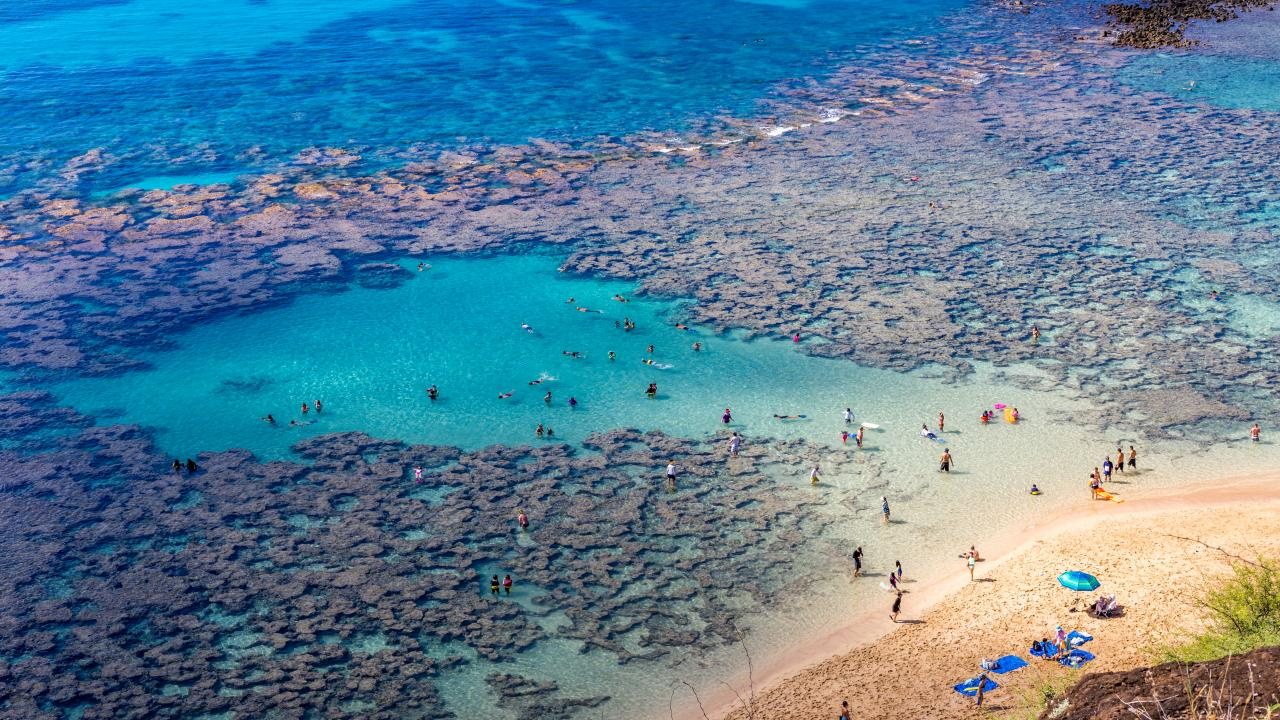 Oahu's North Shore: An Insider's Guide to a Wild Side of Hawaii