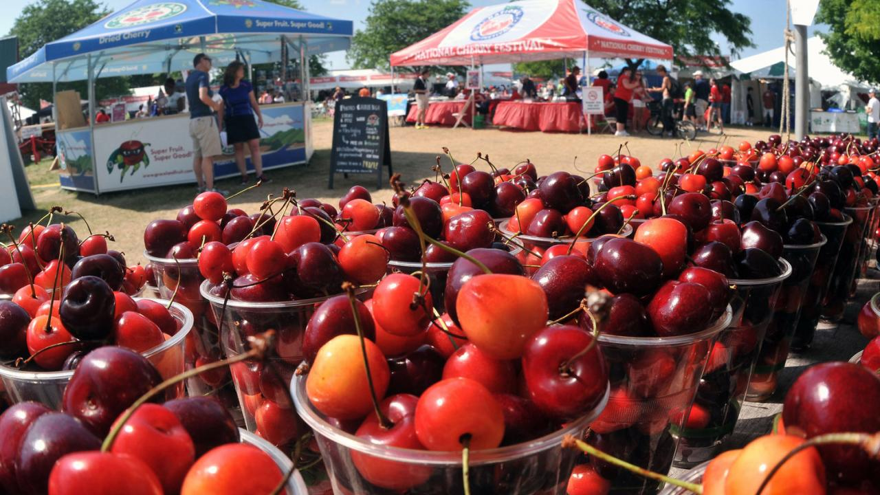 8 fun summer food festivals in the usa