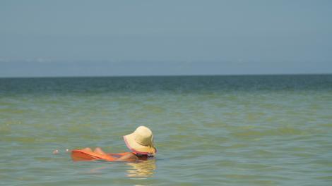 Pete Sample Vero Beach Florida