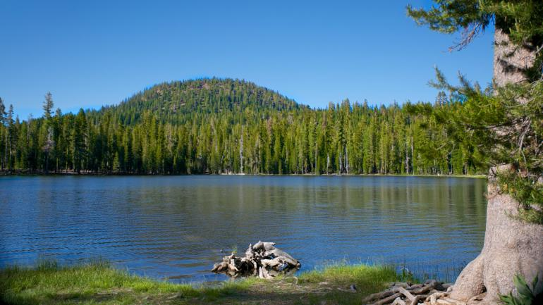 Northern california outdoor holiday state parks lakes for Whiskeytown lake fishing