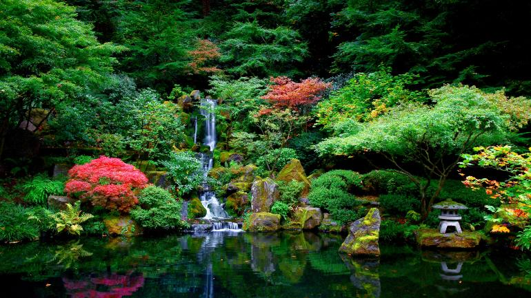 Discover 6 Lush Gardens in Oregon