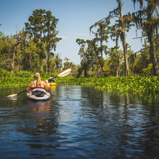 On a kayaking tour near New Orleans, Louisiana