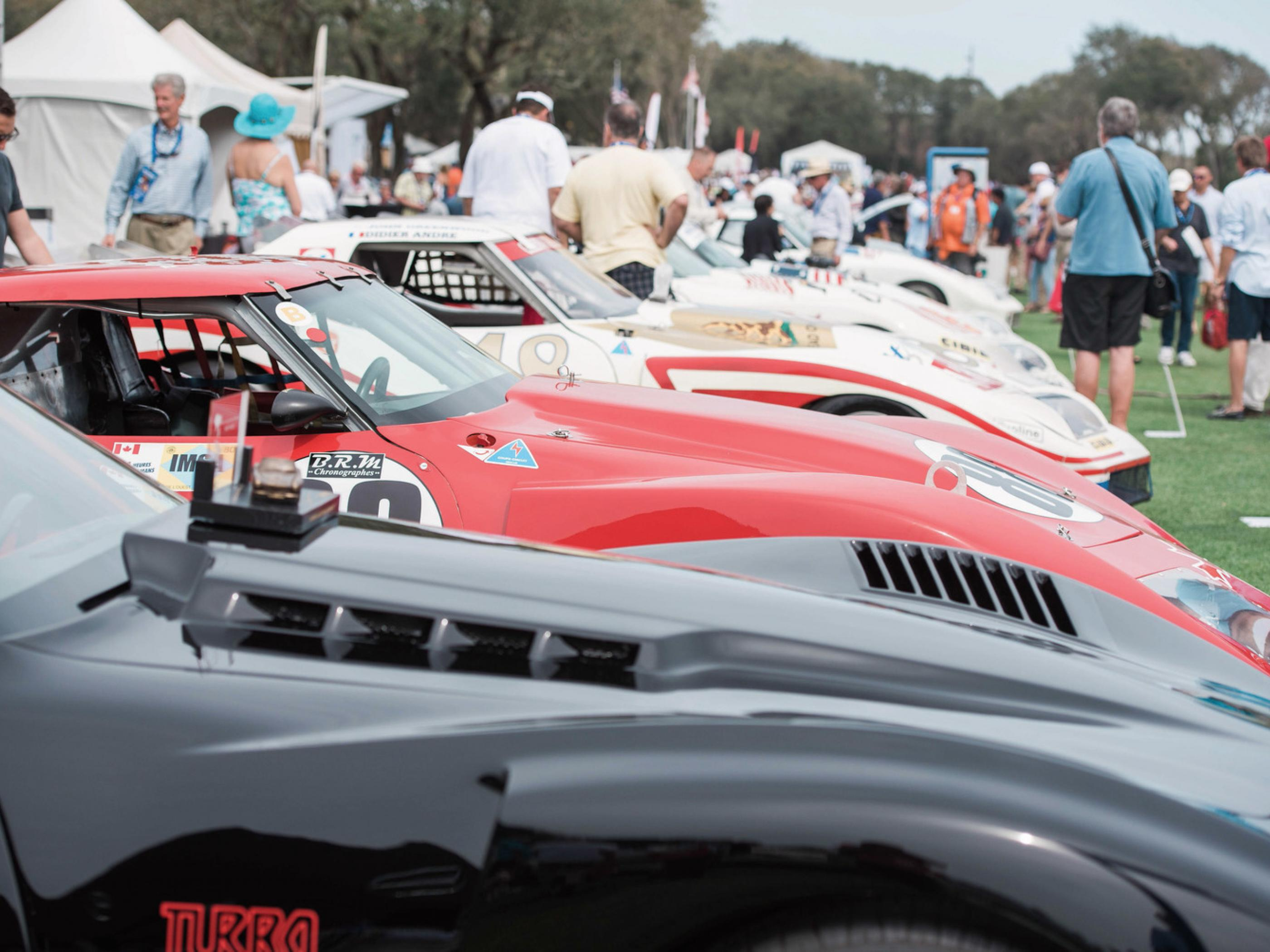 Amelia Island Florida Travel Guide - Green isle park car show