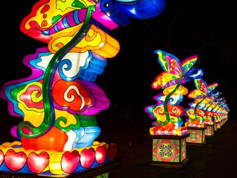 Colorful lanterns all in a row at the Chinese Lantern Festival
