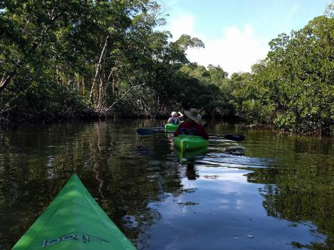 "Kayaking in J.N. ""Ding"" Darling National Wildlife Refuge on Sanibel Island, Florida"