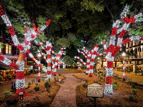 Holiday lights illuminating Knoxville, Tennessee