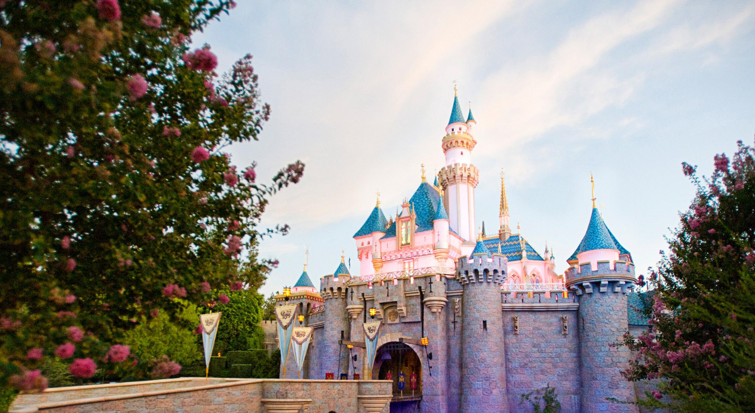 Disneyland California Vacations
