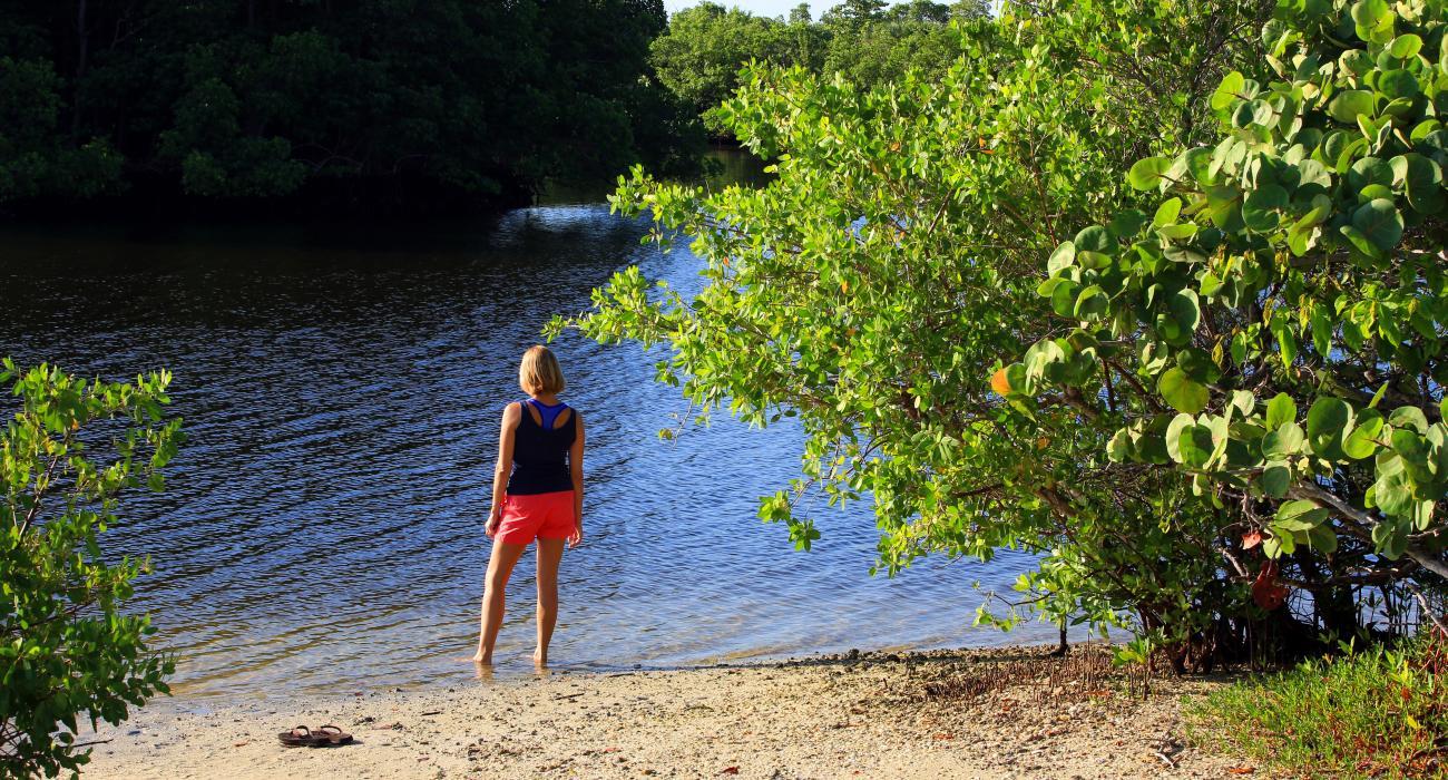 SunStream Hotels & Resorts: Dream Lodging in Sunny Florida | Visit ...