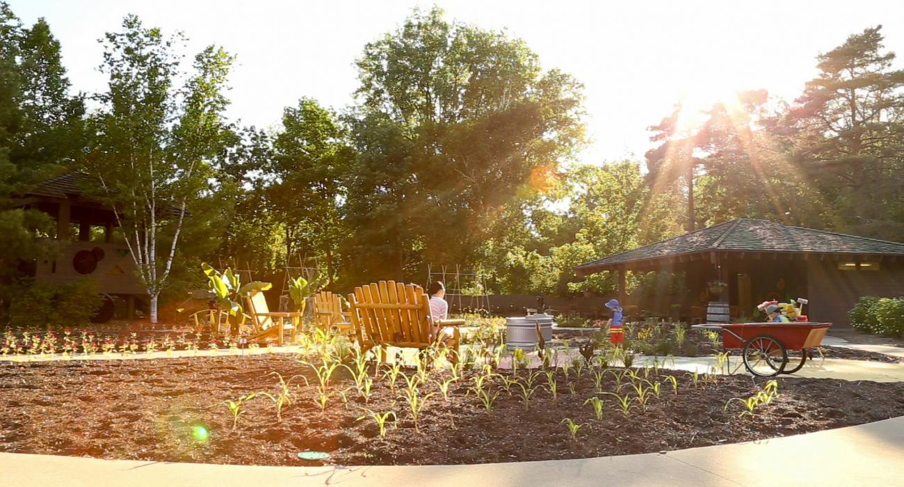 Dow Gardens Michigan t Garden trees Gardens and