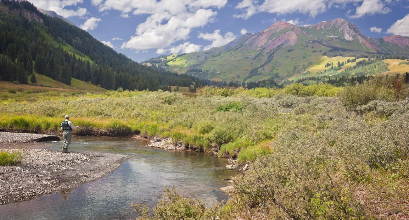 The gunnison valley colorado for Gunnison river fly fishing