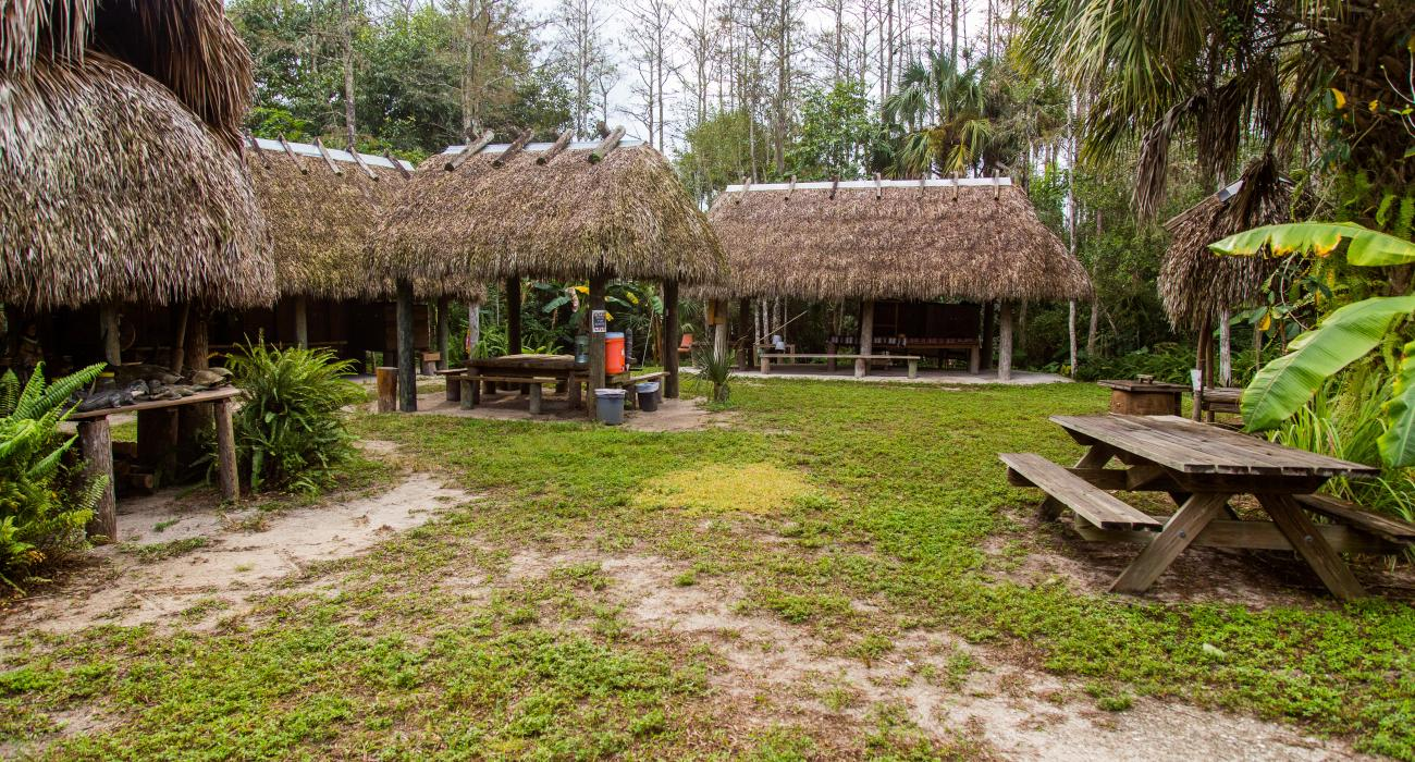 Florida S Big Cypress Seminole Indian Reservation Nature