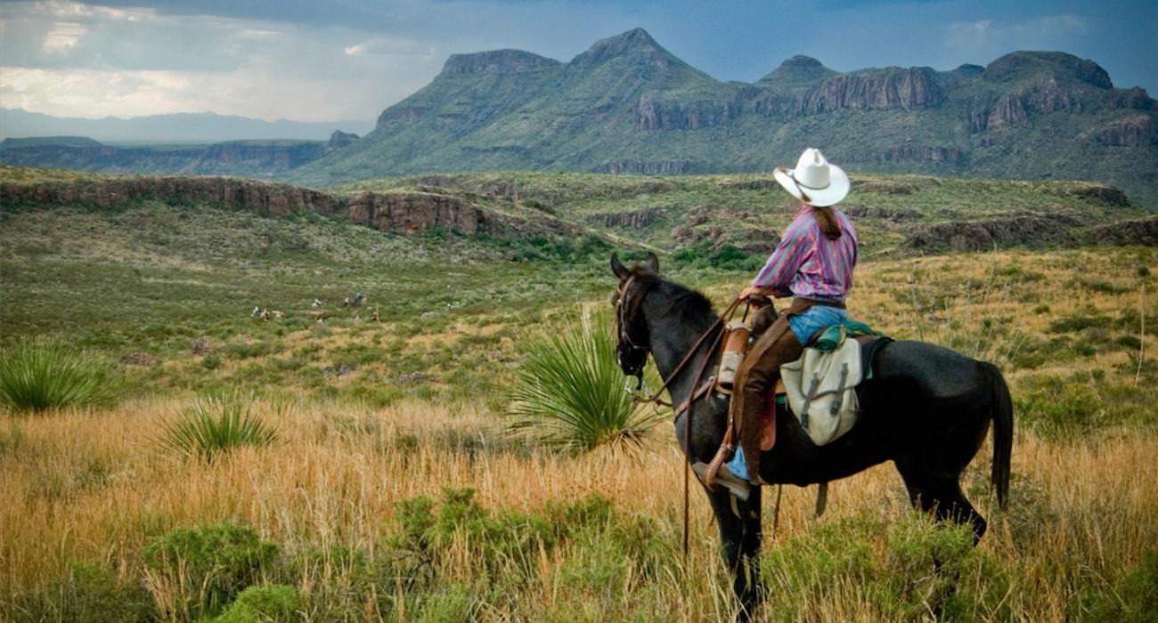 Saddle Up Texas Trails On Horseback