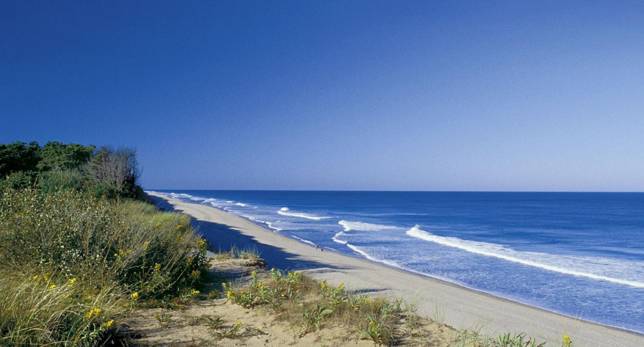 From Boston to the Beach: Road Tripping to Cape Cod