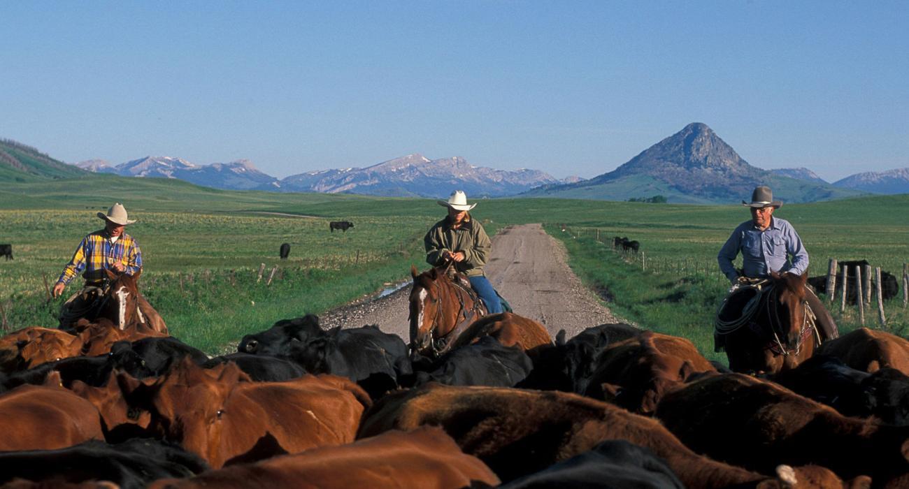 Montana Holidays Things To Do In Montana Visit Montana Usa