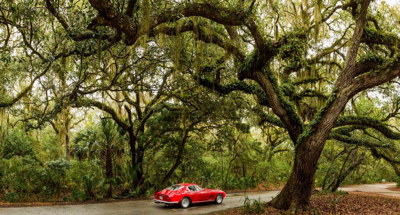 Amelia Island Florida Travel Guide