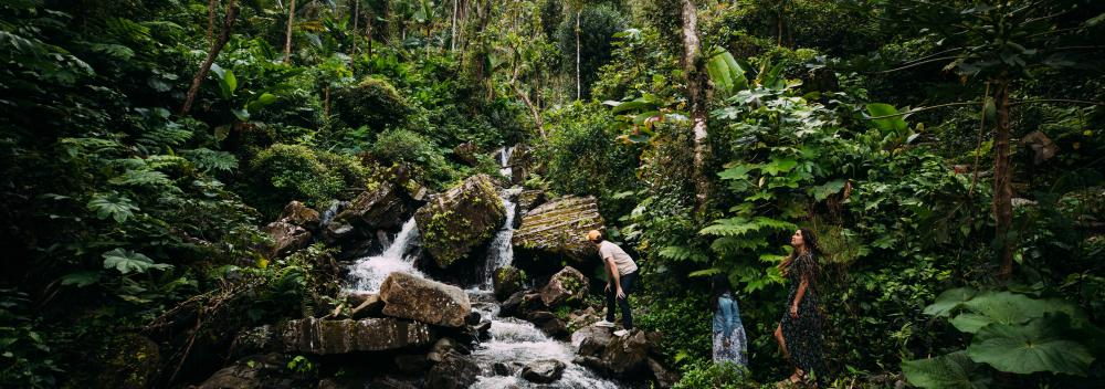 Exploring a waterfall in El Yunque National Forest in Puerto Rico